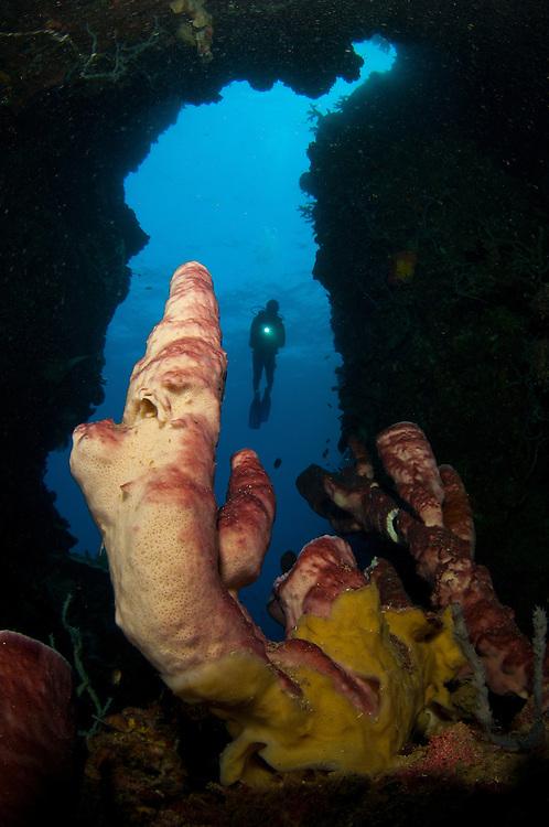 A diver looks into a cavern at a sponge, Gorontalo, Sulawesi, Indonesia