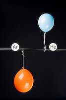 HELIUM AND ARGON FILLED BALLOONS<br /> (Variations Available)<br /> The Two Balloons Are Filled To The Same Volume<br /> After 10 hours the helium filled balloon is smaller than the Argon filled balloon. Helium effuses out of the balloon faster than Argon.  Light atoms or molecules effuse through the pores of the balloons faster than heavy atoms or molecules.