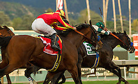 ARCADIA, CA  FEBRUARY 4: #1 Hoppertunity, ridden by Flavien Prat, on February 4, 2017, at Santa Anita Park in Arcadia, CA.  (Photo by Casey Phillips/Eclipse Sportswire/Getty Images)