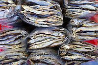 Bags of dried sardines for sale in Chinatown, Vancouver, British Columbia, Canada