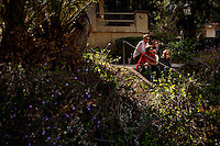 Los Angeles, Calif., April 26, 2009 - From top left, Lewis Nicolas Pesacov, Garrett Ray, Ariel Rechtshaid and Matt Popieluch of the band Foreign Born in front of an abandoned home in Elysian Park in Los Angeles.