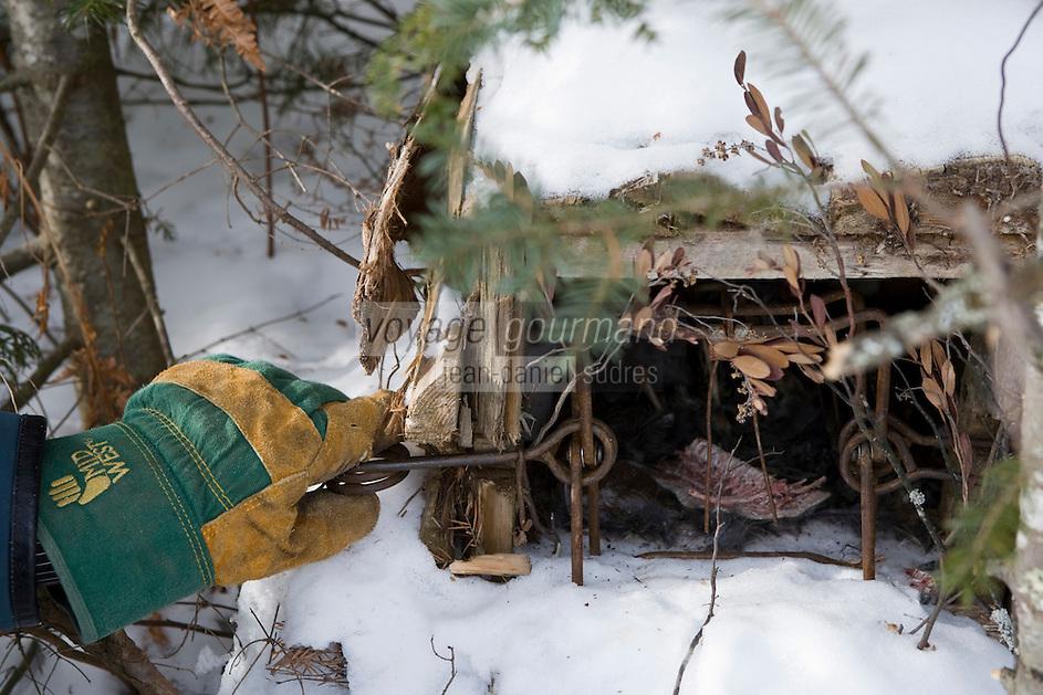 Amérique/Amérique du Nord/Canada/Québec/Mauricie/Saint-Alexis-des-Monts:  A la Pourvoirie du Lac Blanc Gaston le trappeur place ses piéges- ici un piège à vison