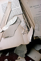 ACID DAMAGE TO BOOK PAPER<br /> SO2 In Air &amp; Acid In Paper Content Cause Damage