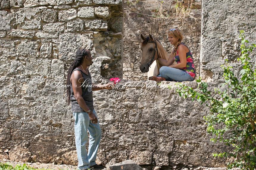 Horses at Butler Bay Ruins<br /> St. Croix<br /> US Virgin Islands