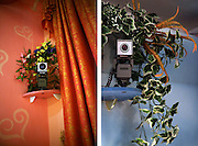 Prague, Czech Republic - February, 2007.  A web camera decorated with plastic flowers in the Barbie Room. There are 10 theme rooms, in the Big Sister, to meet every client's fantasy - from romantic Barbie Room to Mountains and Iglu, all the way to Hell (Fetish Room).