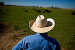 Darrell Wood works on his cattle ranch in Vina CA, Tuesday Aug 16, 2011. Wood is the largest organic beef rancher in California and provides beef to Whole Foods markets in Northern California. He works hard to balance farming with preserving California's grass lands.