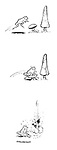 (Frog and rocket-propelled mushroom)
