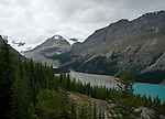 The much less photographed side of Peyto Lake with the glacier melt water flowing into the lake north of Lake Louise in Canada