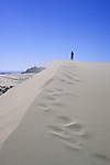 A hiker braves the wind atop a sand dune ridge in Oregon Dunes National Recreation Area, Oregon