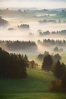 Autumn morning fog clears from rural landscape of Allgaeu region near Eisenberg, Bavaria, Germany