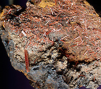 CROCOITE.Lead Chromate Crystals.(PbCrO4) Relatively soft on the Mohs hardness scale, crocoite appears as monoclinic prismatic crystals. Found in oxidized lead veins as a secondary mineral, requiring a presence of chromium solution in deposits to form.