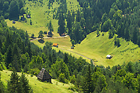 Village Zaovine is made of 28 smaller villages on mountainous terrain covered with forest.
