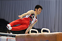 Kazuhito Tanaka (JPN), JULY 2nd, 2011 - Artistic gymnastics : Japan Cup 2011 .Men's Team Competition Pommel Horse at Tokyo Metropolitan Gymnasium, Tokyo, Japan. (Photo by YUTAKA/AFLO SPORT)