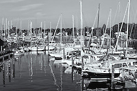 Sailboats and other pleasure craft sit at anchor at the Annapolis Yacht Club on Spa Creek in Annapolis, Maryland.