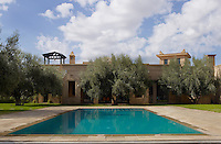 A tranquil outdoor swimming pool is surrounded by mature olive trees in the garden