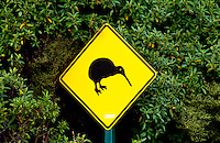 Road traffic sign - look out for kiwis, North Island, New Zealand