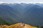 Tourists view Elwha River Valley from Hurricane Ridge viewpoint, Olympic National Park