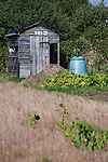 A garden shed and composter