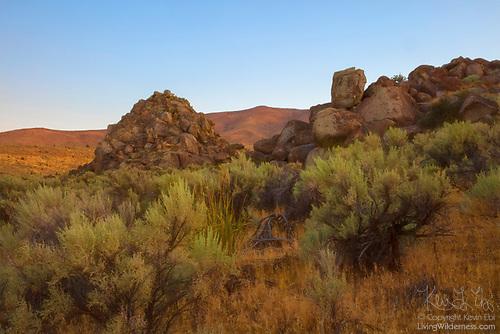Golden Light on Rock Outcroppings, Mormon Basin, Oregon