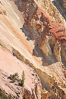 Mineral colored walls of the Grand Canyon of the Yellowstone