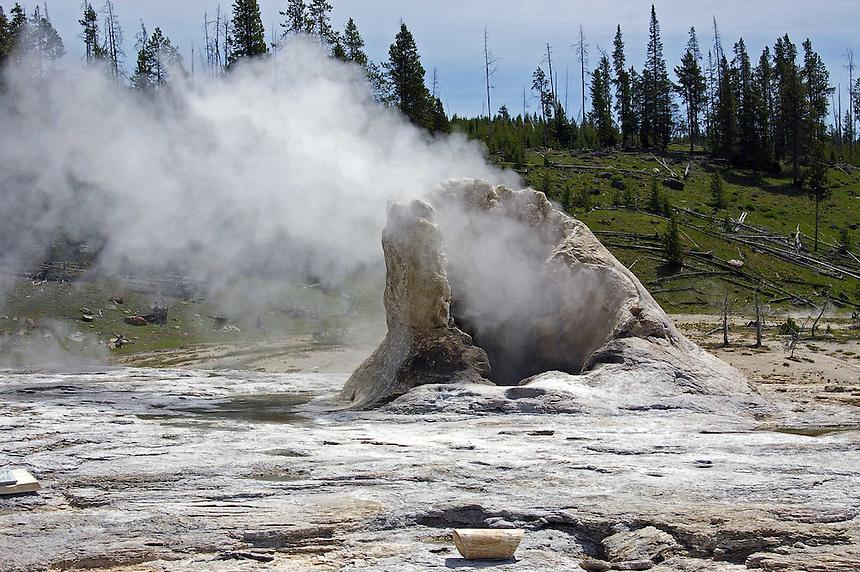 Giant Geyser, Yellowstone National Park