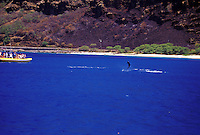People dolphin watching by boat and kayak off Makua beach, Oahu, Hawaii