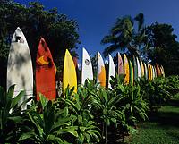 Maui, Hawaii Stock Photos