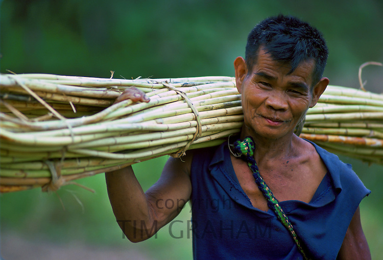 Ifugao man carrying a bundle of Rattan that he has cut from the mountainside, Banaue, Luzon,Philippines.
