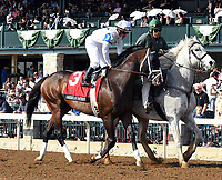 LEXINGTON, KY - APRIL 14: American Patriot wins the 29th running of the Maker's 46 Mile (Grade 1) $300,000 for owner WinStar Farm, trainer Todd Pletcher and jockey Javier Castellano.  April 14, 2017