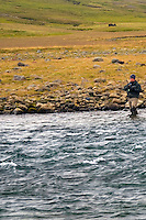 Atlantic Salmon Catch and Release Fly Fishing in Iceland. Fly fisherman fighting salmon in Rettarhylur pool, Sela Vopnafjordur.