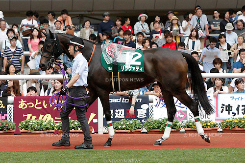 Lilavati,<br /> JUNE 12, 2016 - Horse Racing :<br /> Lilavati is led through the paddock before the Mermaid Stakes at Hanshin Racecourse in Hyogo, Japan. (Photo by Eiichi Yamane/AFLO)