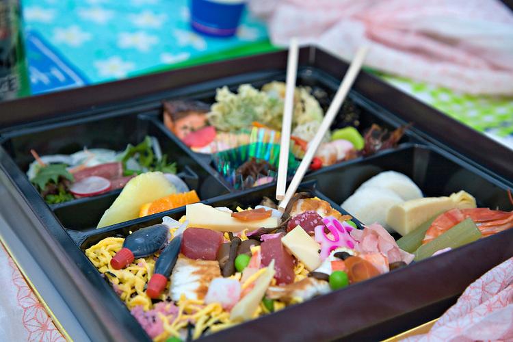 Detail of Japanese Bento box