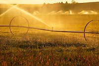 Watering the wheat fields near Ritzville in Eastern Washington.