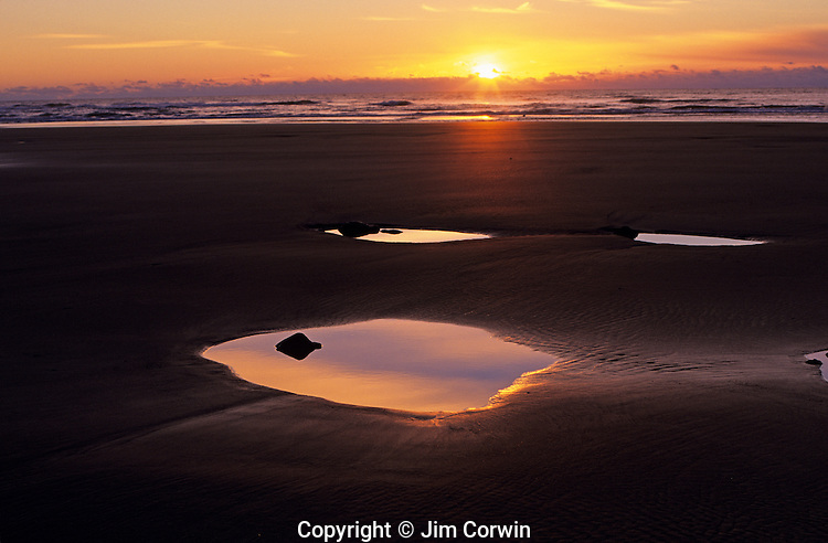 Cape Sebastian State Park Southern Oregon Coast along Highway 101 at sunset low tide  and tidal pools Oregon State USA