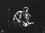 Bruce Springsteen.© Chris Walter.