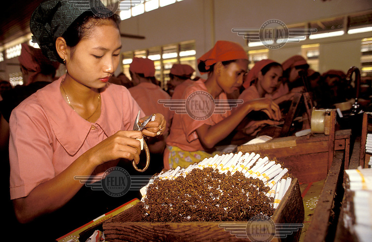 © Chris Stowers / Panos Pictures..Surabaya, Indonesia...Cigarette factory. Each cigarette is trimmed at either end by hand.