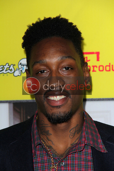Larry Sanders<br /> at the &quot;Movie 43&quot; Los Angeles Premiere, Chinese Theater, Hollywood, CA 01-23-13<br /> David Edwards/DailyCeleb.com 818-249-4998
