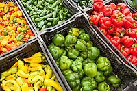 Gresham Farmer's Market, Gresham Oregon, held every Saturday in downtown Gresham, from May - Ocotber