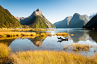 Southland Photos | South Island | New Zealand