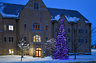 December 16, 2016; Christmas Tree outside Hammes Mowbray Hall (Photo by Matt Cashore/University of Notre Dame)