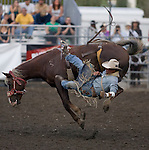 Sean Culver, from Grandview, WA., is bucked off  of Juvenile Quest during the  the Bareback Riding Competition at the Kitsap County Fair and Stampede  held Aug. 26 to Aug. 30, 2009 in Silverdale, WA.  Jim Bryant Photo. All Right Reserved. © 2009