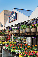 Commercial garden center.
