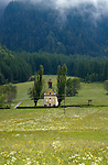 Yellow  church with dome between two trees in a meadow, Imst district,Tyrol, Austria. The Alps