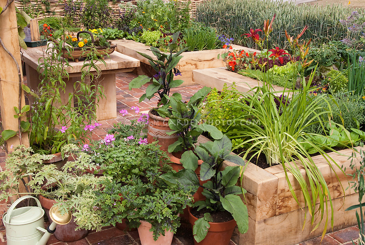 Vegetable Amp Flower Garden In Pots Amp Raised Beds Plant
