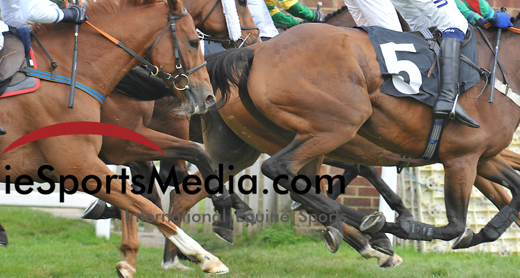 2011 (18.09)  Plumpton Racecourse - Ladies Day