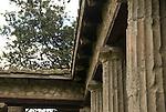 columns in Pompeji
