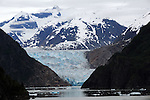 snow capped mountains loom behind the bllue glacier at the head of Tracy Arms fjord in southeastern Alaska