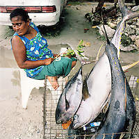 Yellow Fin Tuna for sale on the road side the largest of which would sell for AU$150.