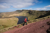 Female hill walker hiking towards Waun Lefrith above Llyn Y Fan Fach, Black Mountain, Brecon Beacons national park, Wales