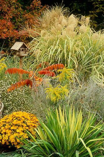 Birdhouse in decorative foliage